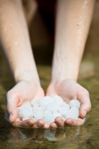 harvesting-salt